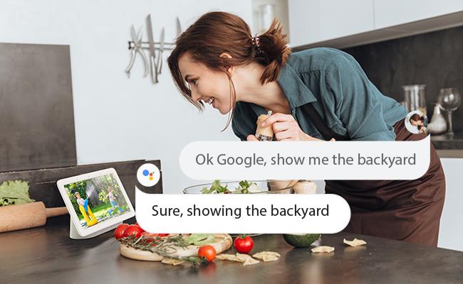 Reolink%image_alt%27s Google Assistant Integration